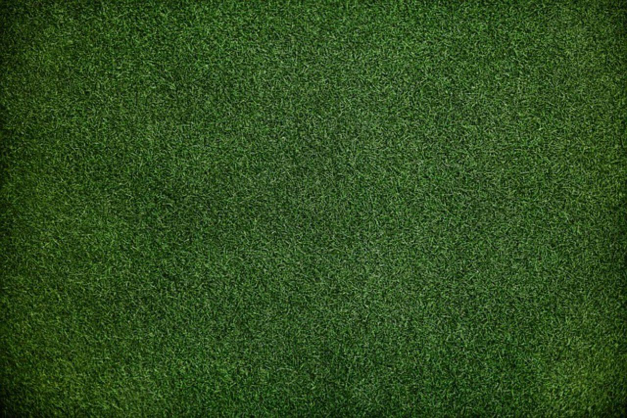 Efektywne i ekologiczne systemy nawadniania trawników