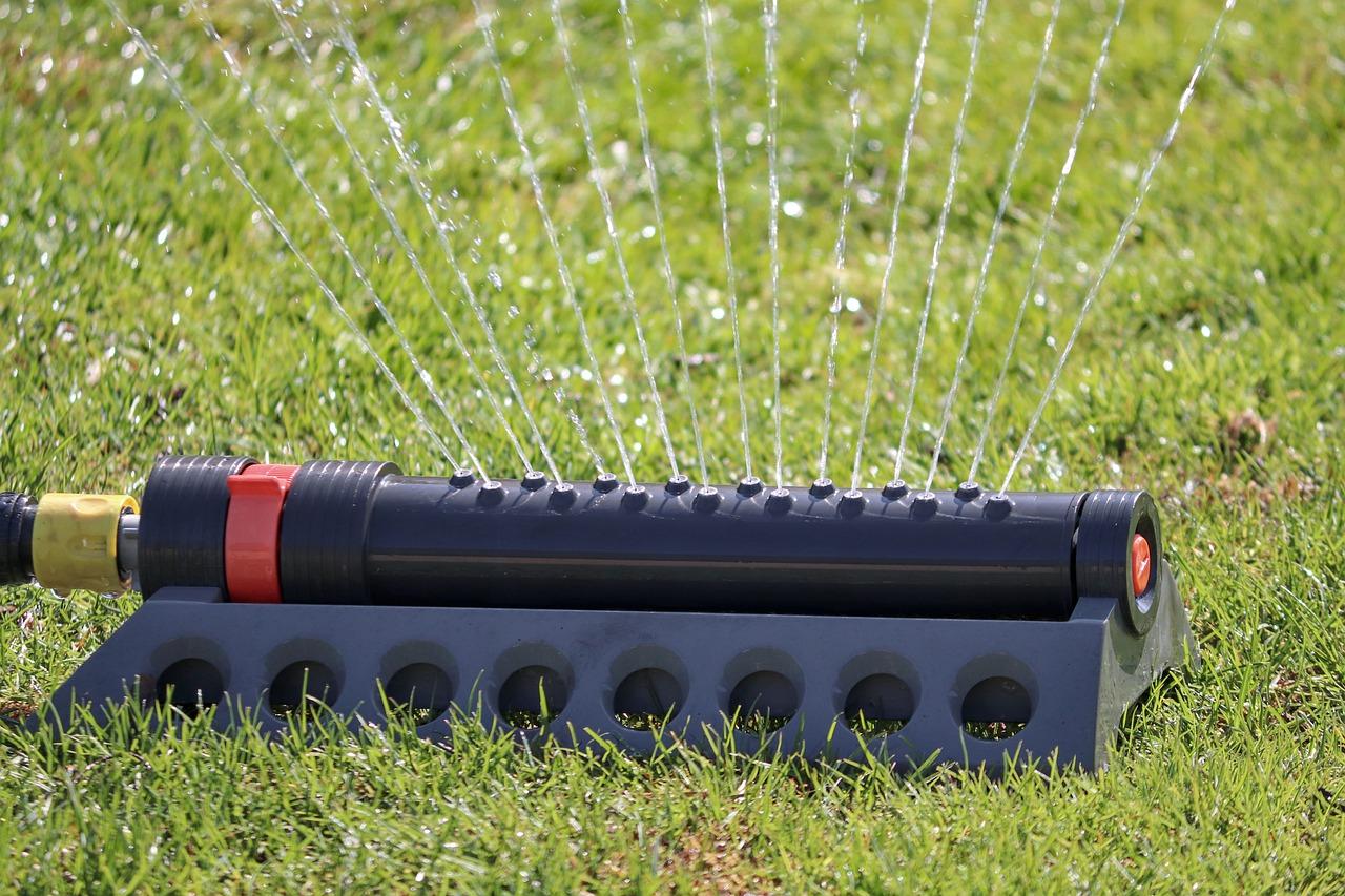 Zasady prawidłowego podlewania trawnika